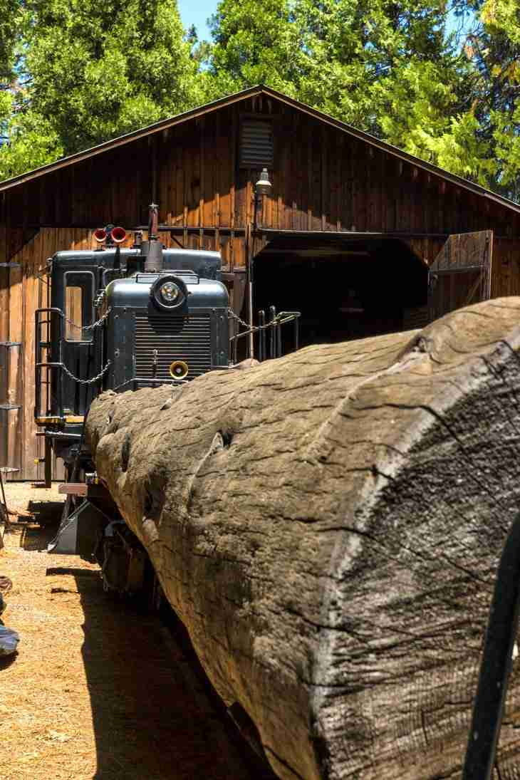 Print of a Logging Train in Yosemite Photo