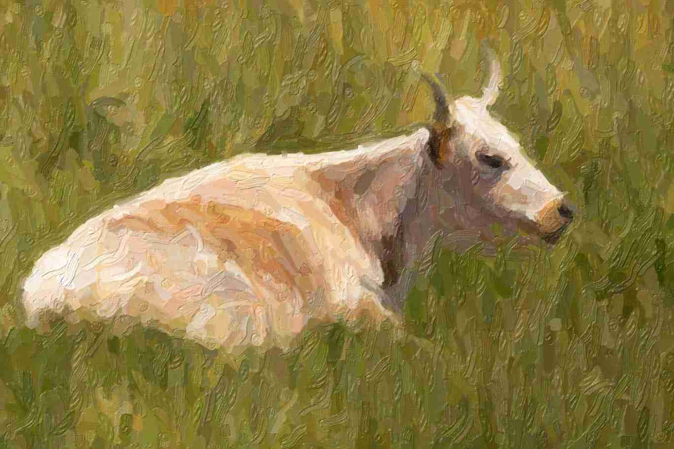 Print of a Cow Laying in the Grass
