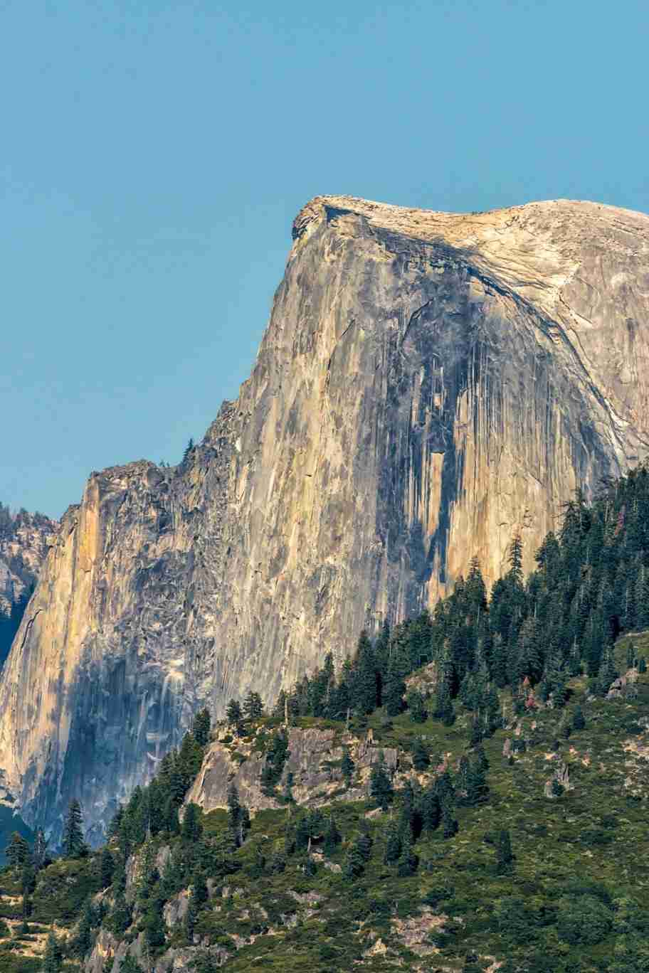 Print of the Face of Yosemite's Half-Dome