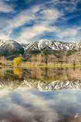 Print of Carson Mountain Range and Trees Reflected in Water