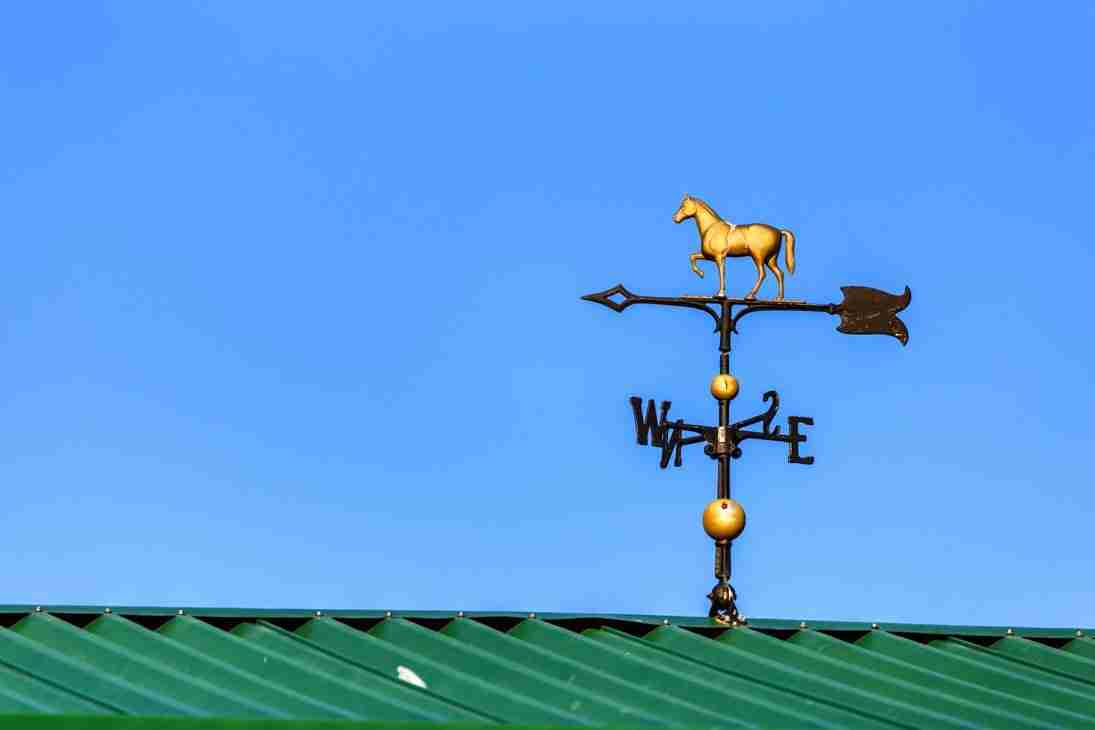 Print of Horse Decorated Wind Vane Photo