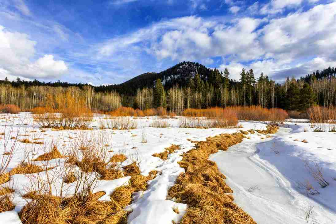Print of Snow Cover with Mountains and Blue Skies at South Tahoe Photo