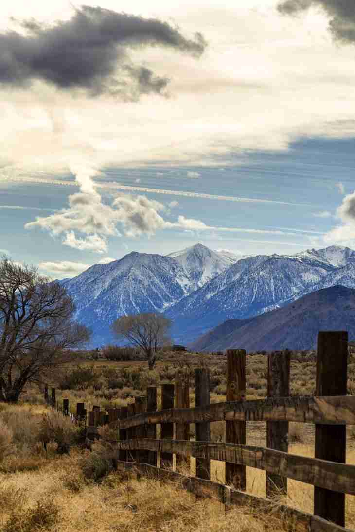 Print of Fence and Snow Covered Sierras Along Jack's Valley Road Photo