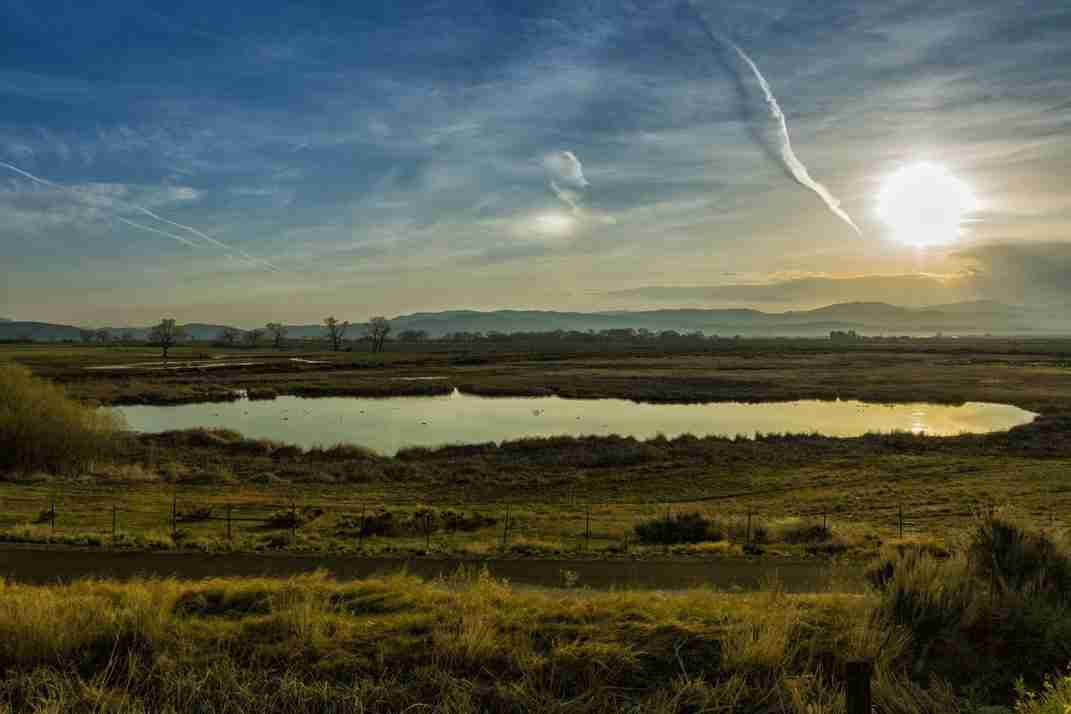 Print of a Pond in Carson Valley Nevada at Sunrise
