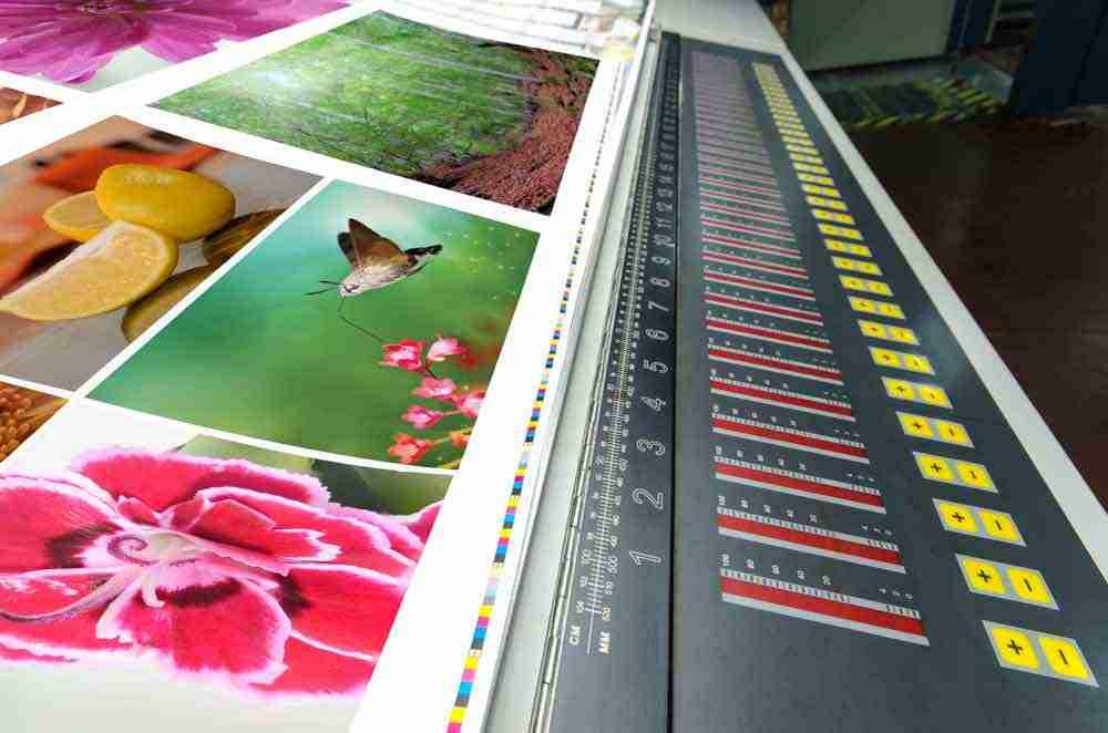 deetlebop-Art-Printing